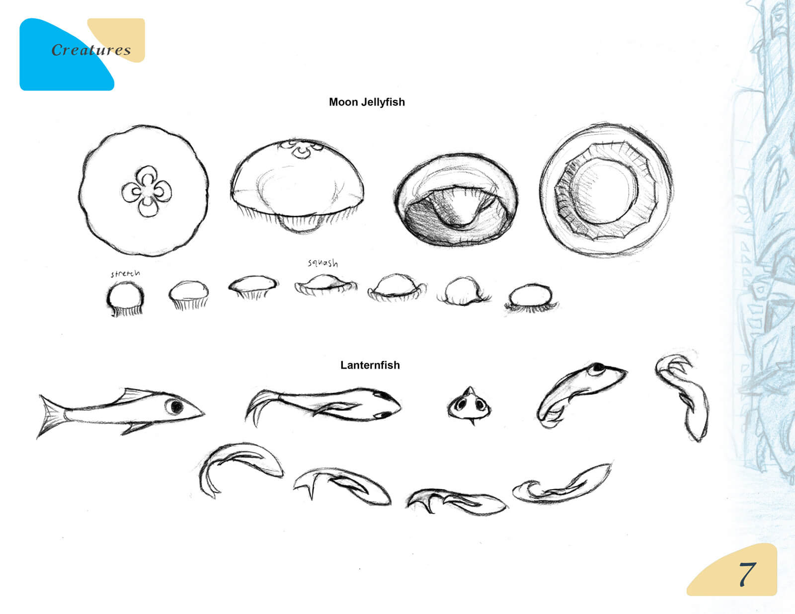 Black-and-white sketches of a moon jellyfish and lanternfish in various poses for the film Beneath the Night Sea