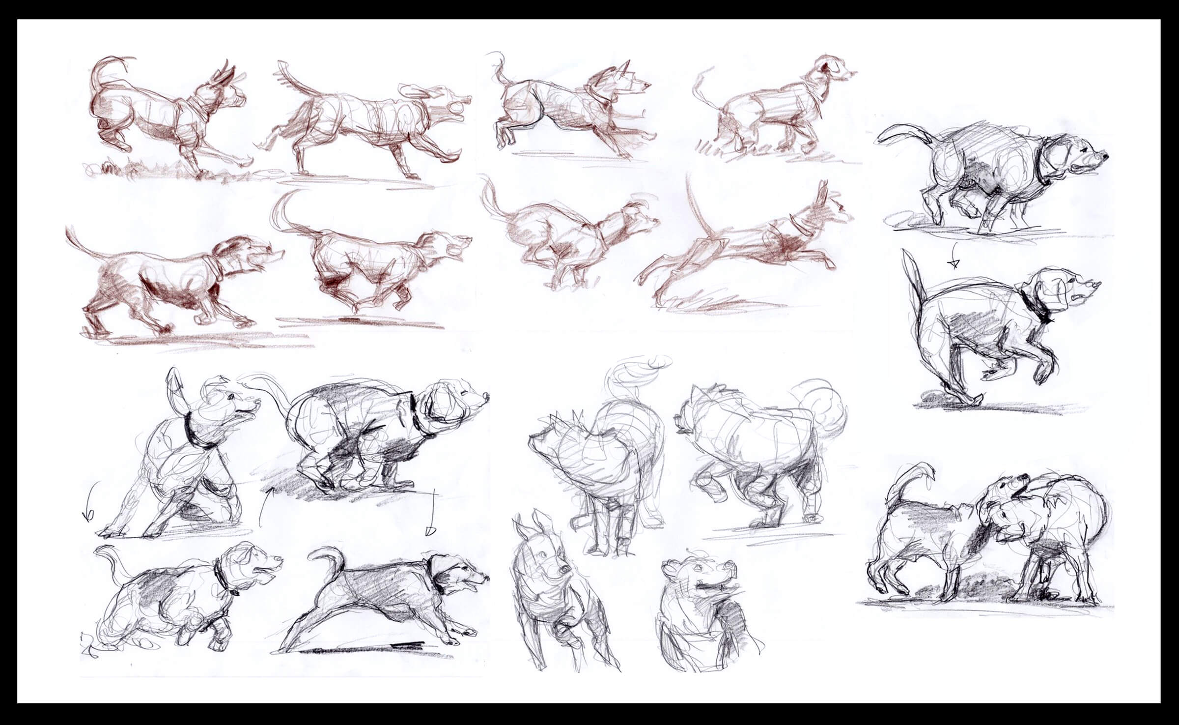 drawing of dogs in various states of play