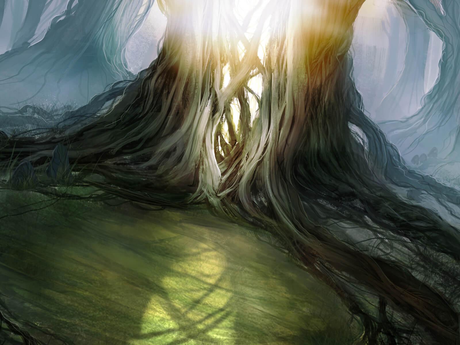 sun shining through gnarled vines