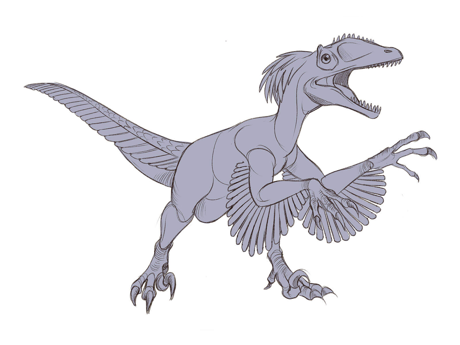 Black-and-gray sketch of a feathered velociraptor in mid-stride with its jaws open.