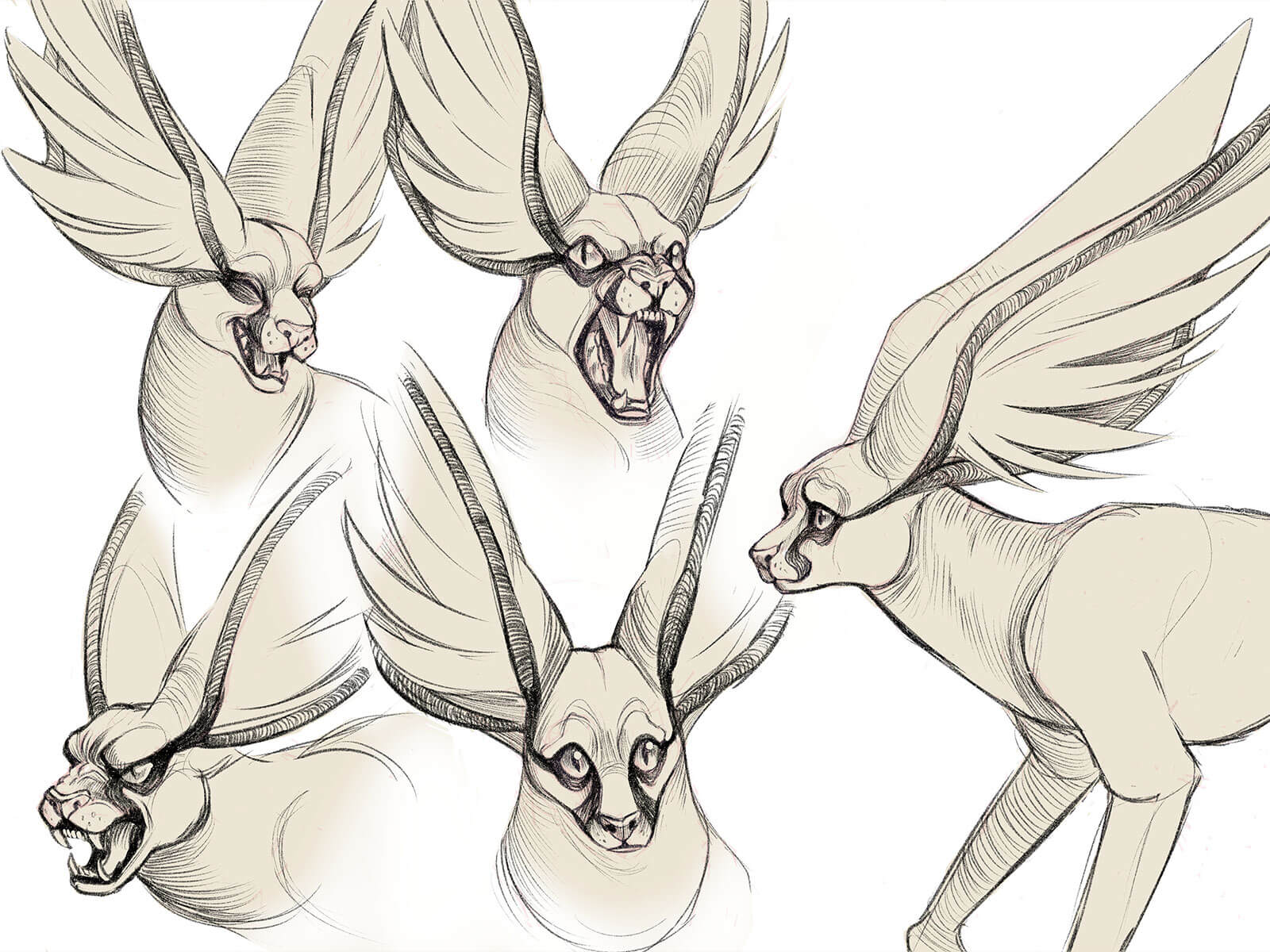 Multiple close-up views of the facial expressions of a caracal-like beast with enormous, wing-like ears.