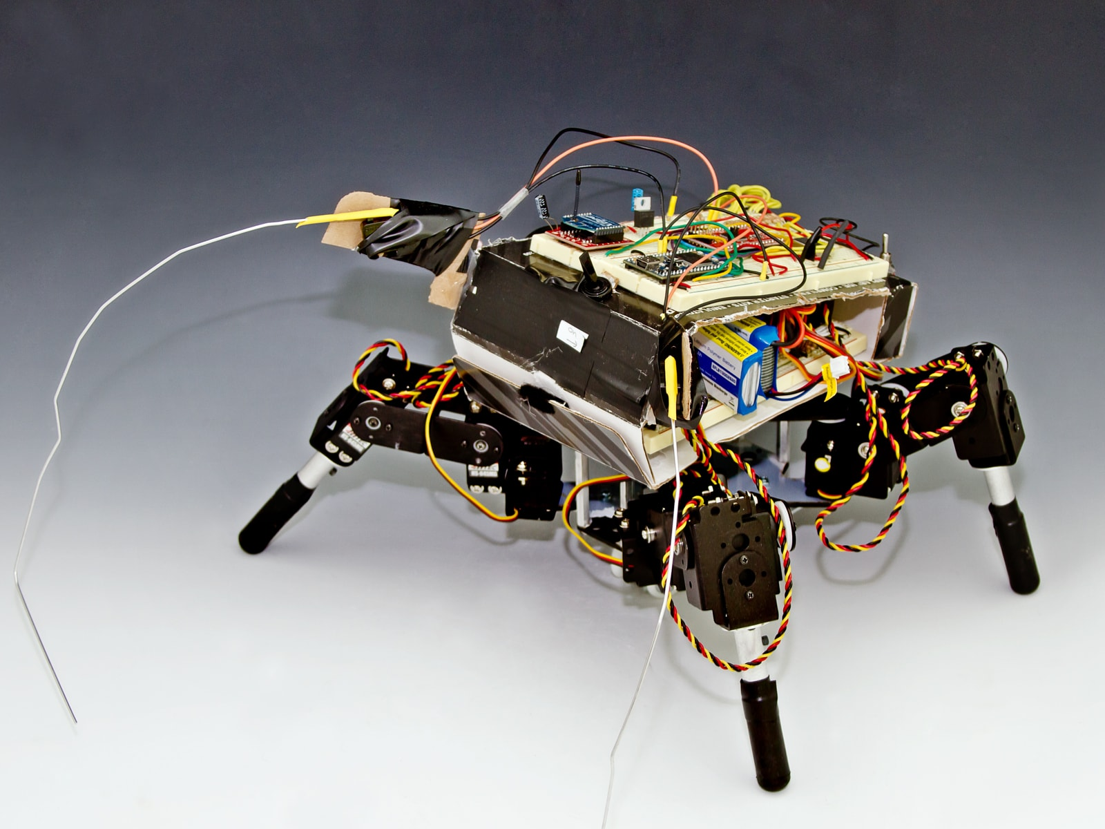 A four-legged robot with exposed wiring and circuitry.
