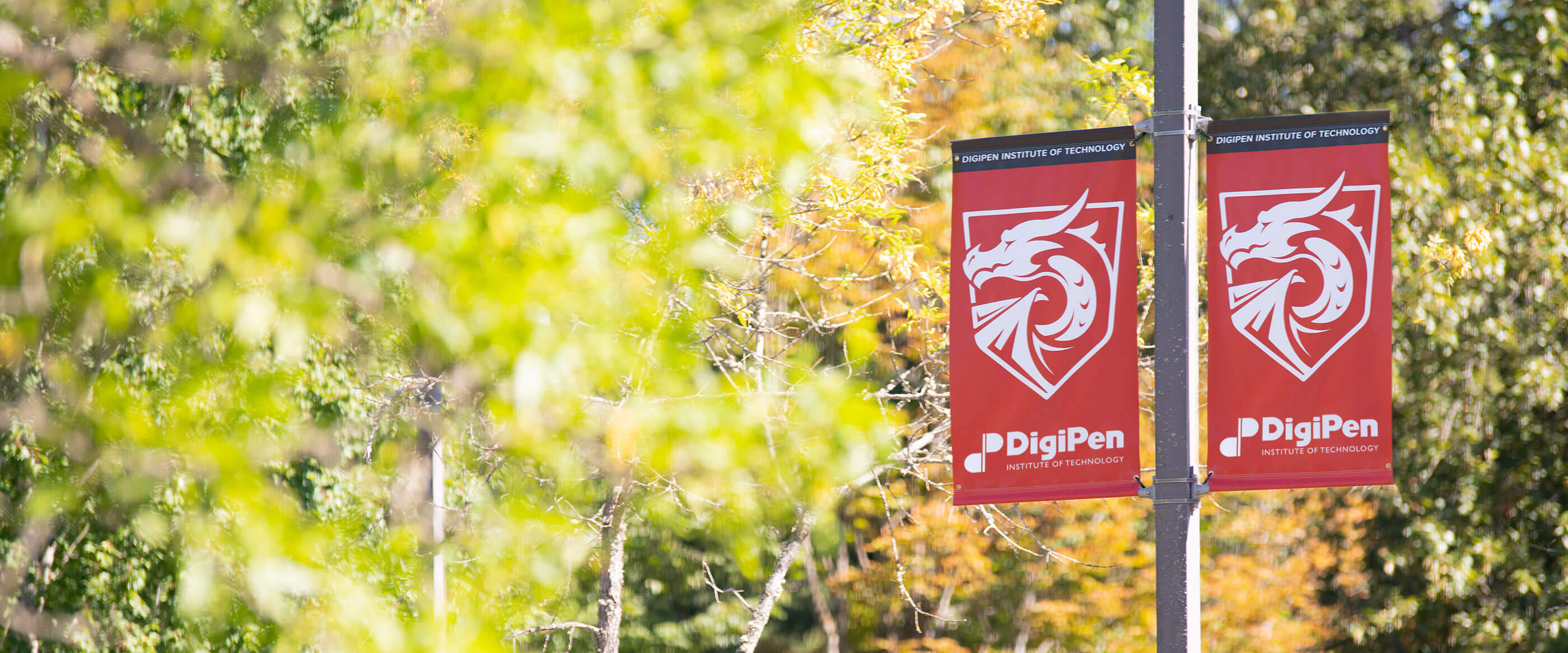 Banner depicting the DigiPen Dragon hanging from a pole.