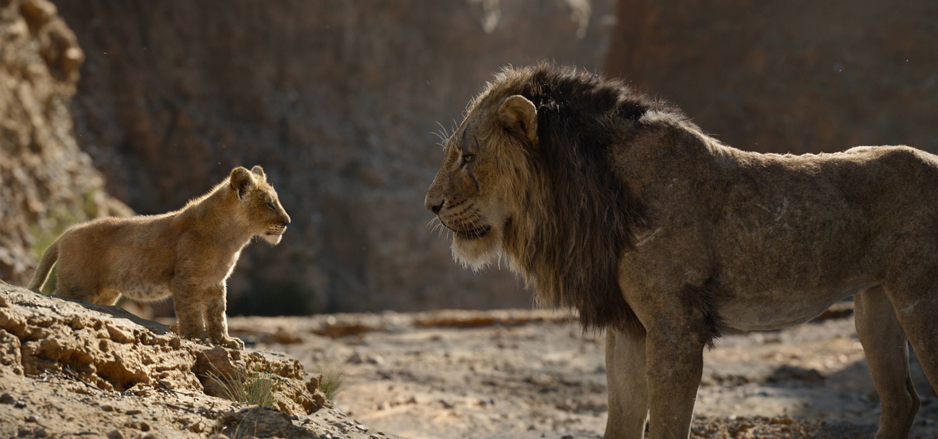 Simba and Mufasa speak to one another in the African savannah in The Lion King.