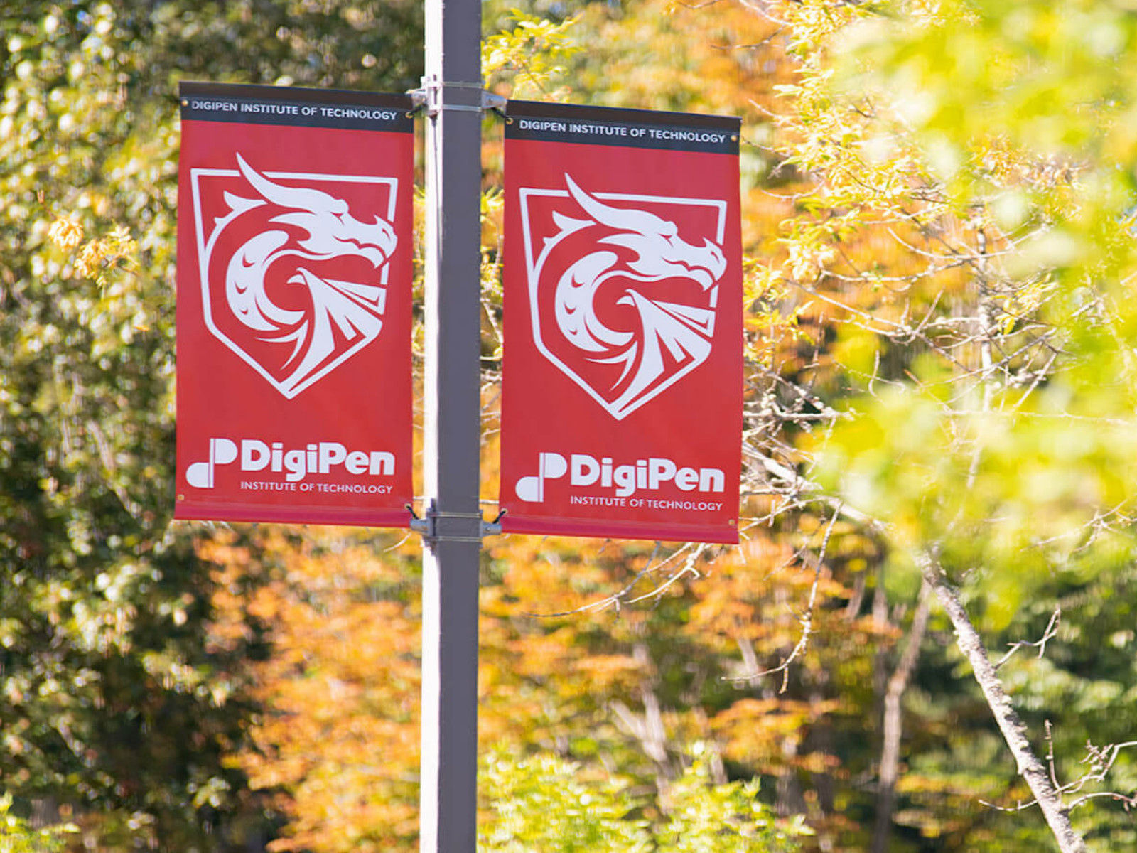 Two DigiPen banners on pole set against fall scenery