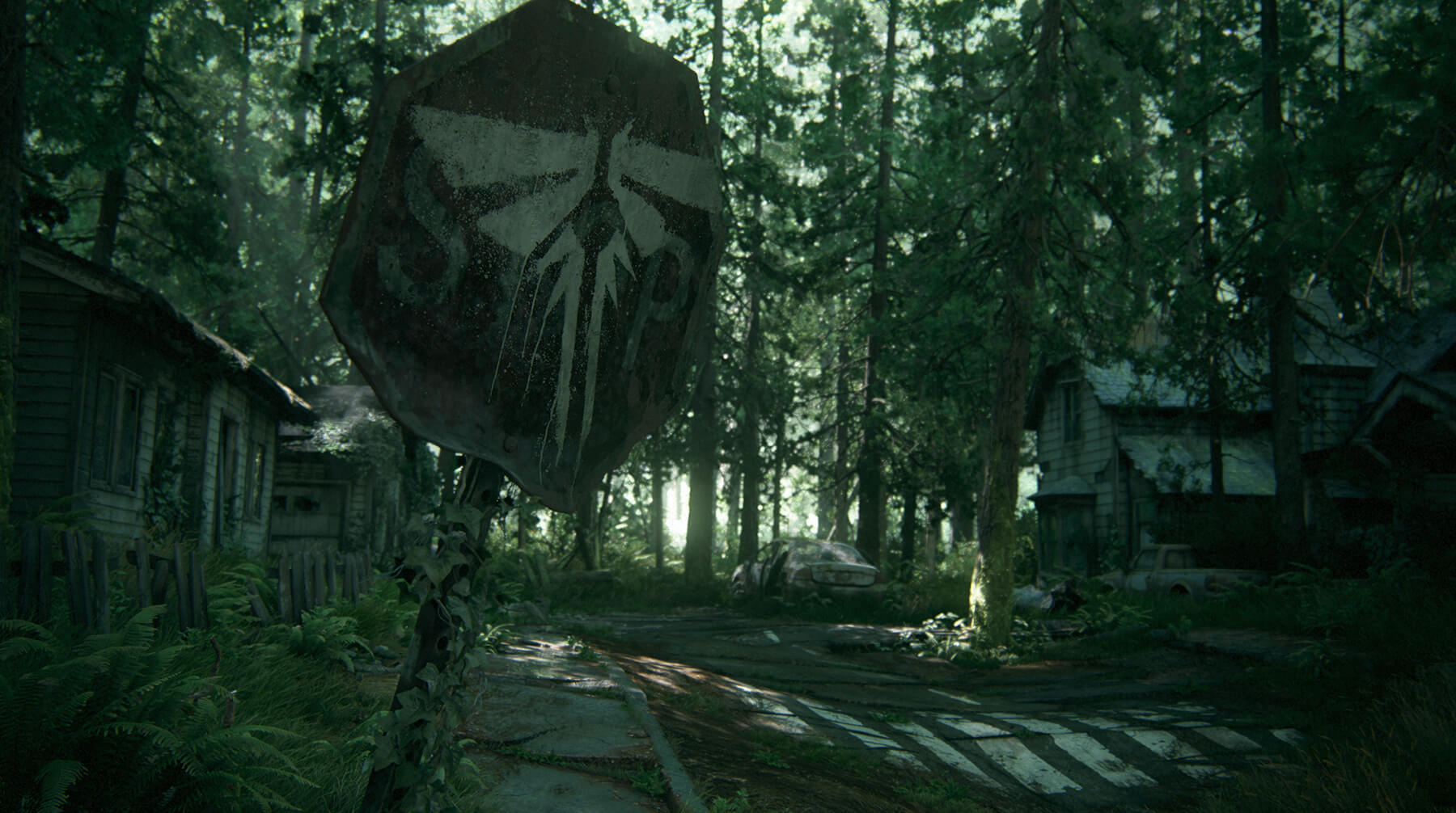 A decaying residential street, surrounded by forest