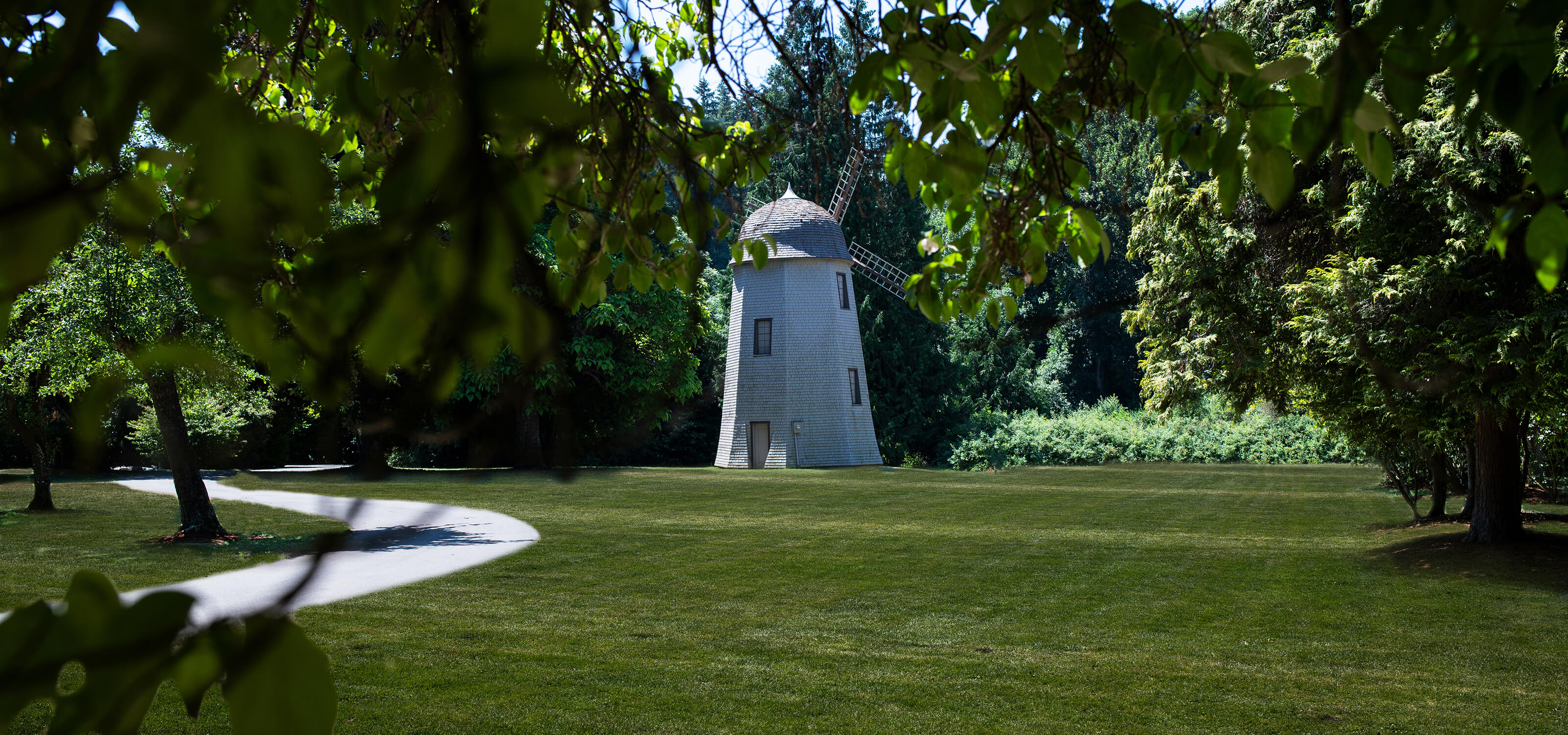 Picture of windmill at Redmond's Marymoor Park